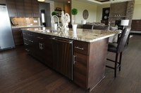 Thumb kitchen  contemporary style  quartersawn walnut  banded door  dark color  horizontal grain  full overlay